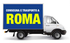 camion-300x184